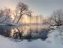 Winter sun illuminate frosty trees in the morning