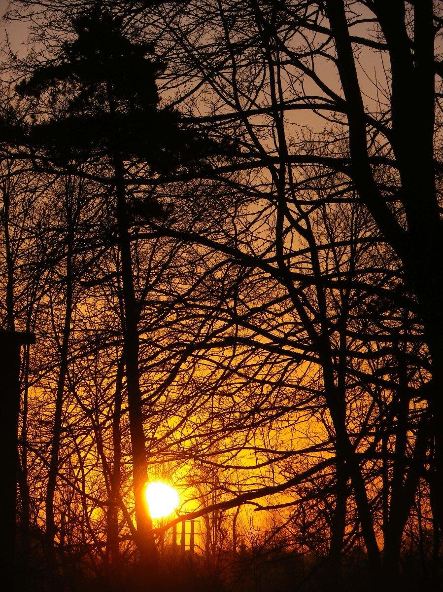024- Lumieres du matin...