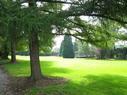 Le parc de la maison...