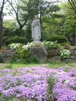 La petite Thérèse de Lisieux nous précède toujours, ici, au Carmel de Séoul