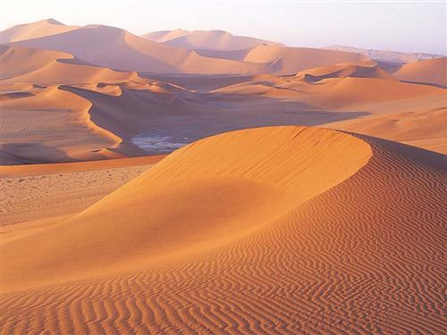 desert-sable