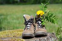 ChaussuresMarcheETFleurs