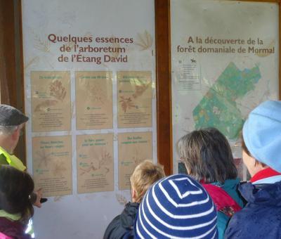 explication forestiere
