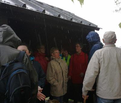 Bienvenues les cabanes d'observation des oiseaux au moment de la tempête !