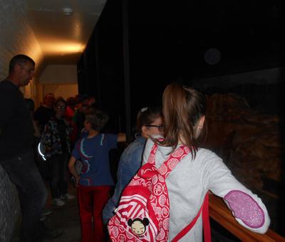 Images - Stald - Cate# au Fort Leveau - 2014-06 -