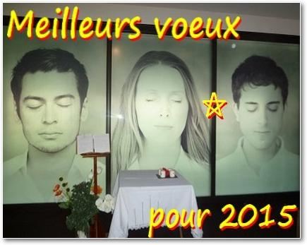 1412_IMG_Voeux2015