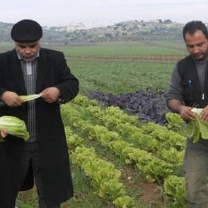 Il leur prodigue ses conseils pour les initier à la culture de produits de qualité, bio et respectueux de l'environnement.