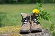 Chaussures Marche ET Fleurs