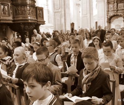 1eres com. 2017 St Bernard (62)