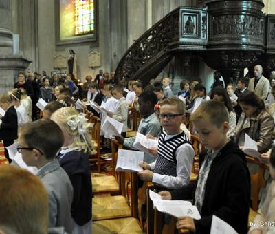 1eres com. 2017 St Bernard (71)