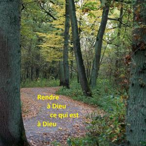 Rendre graces pour les couleurs de l'automne