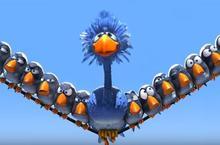 oiseaux-surunfil
