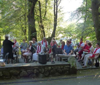 Lourdes-2018 - photos Cathedrale verdure (6)