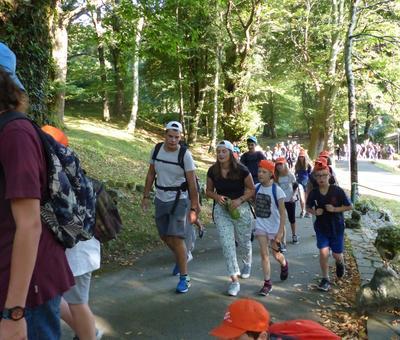 Lourdes-2018 - photos Cathedrale verdure (23)