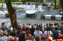 Lourdes-2018 - photos Cathedrale verdure (36)