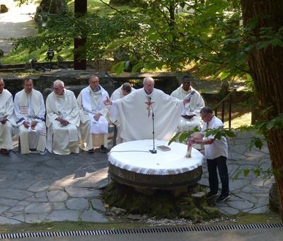 Lourdes-2018 - photos Cathedrale verdure (37)