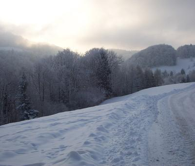 TAMIE neige