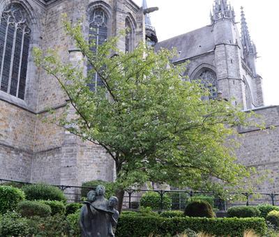 1809_Douai à Mons 1918-2018 2