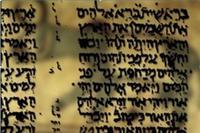 Bible Agnes
