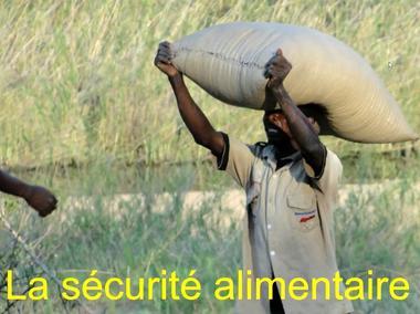 YM_Mozambique (11)