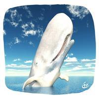 Baleine Jonas
