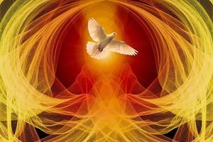 7 dove-pixabay