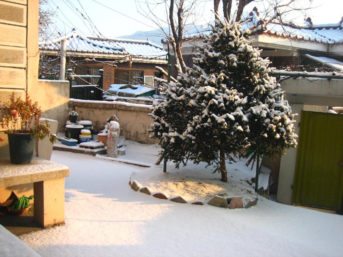 Daejeon souslaneige bis.jpg