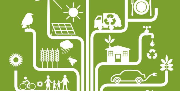 Environnement - énergie renouvelable - développeme