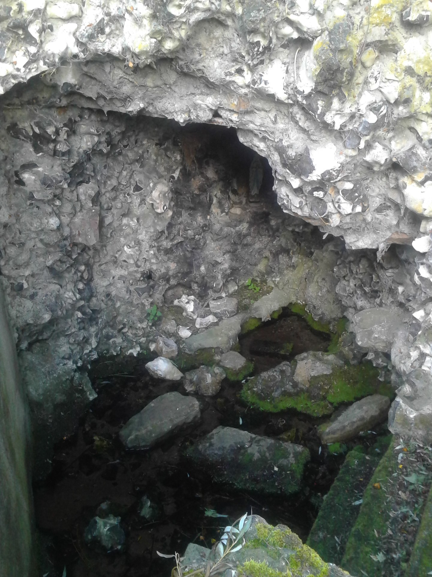 Grotte source statue bbv