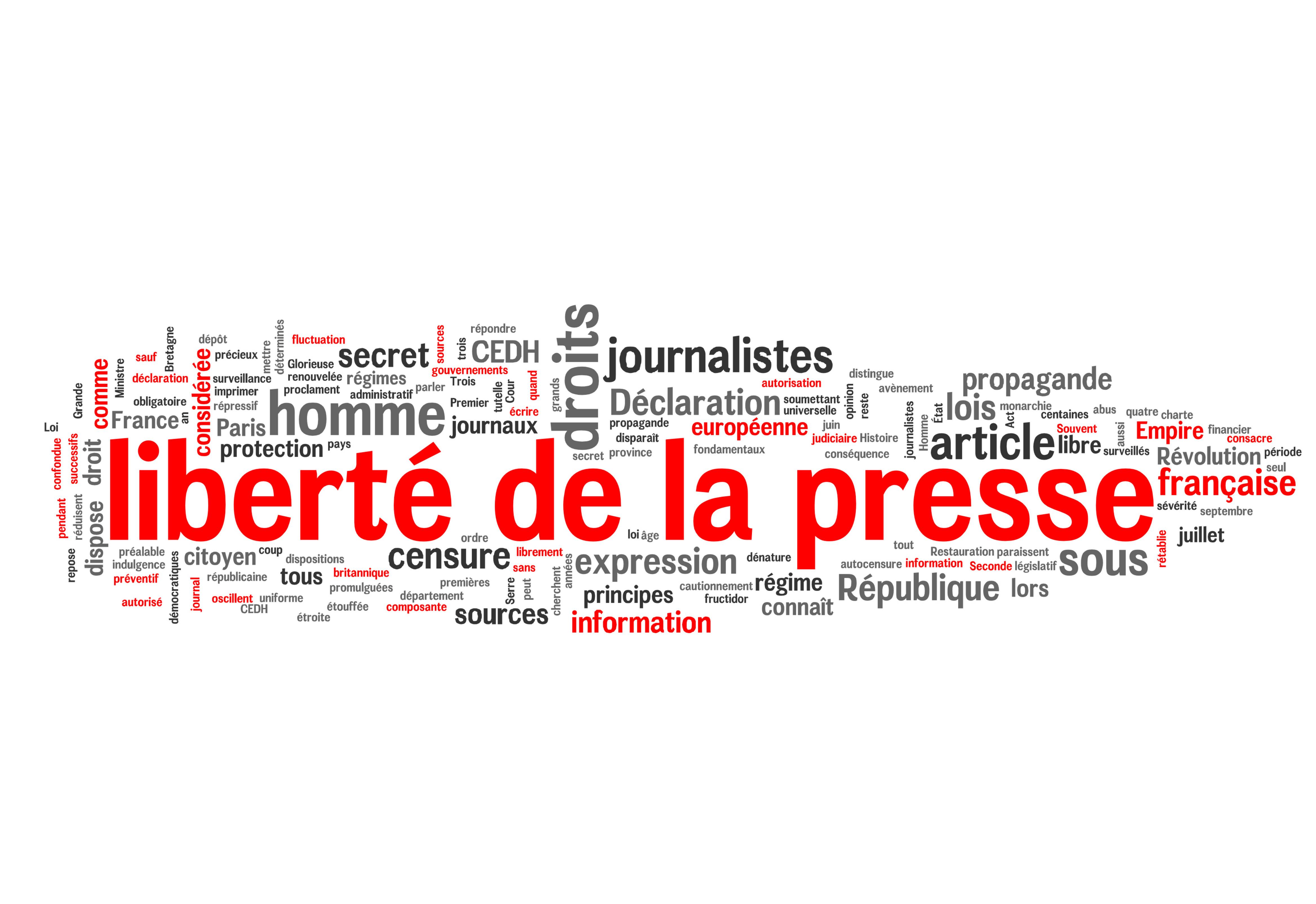 liberté de la presse (journaliste)