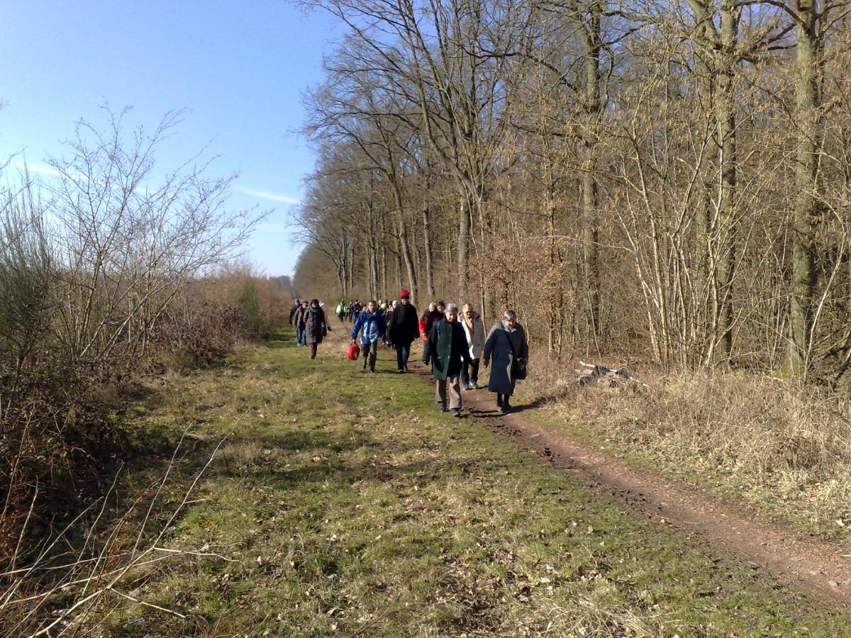 marche a Bruille St Amand (10)