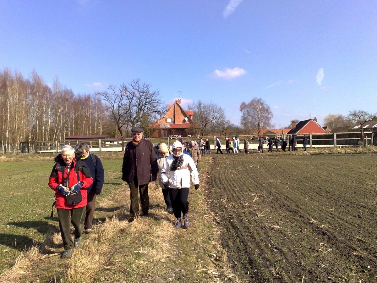 marche a Bruille St Amand (2)