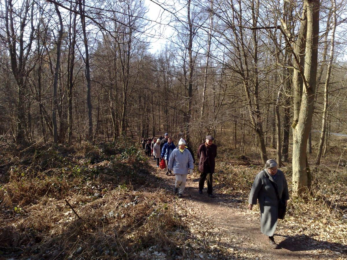 marche a Bruille St Amand (6)