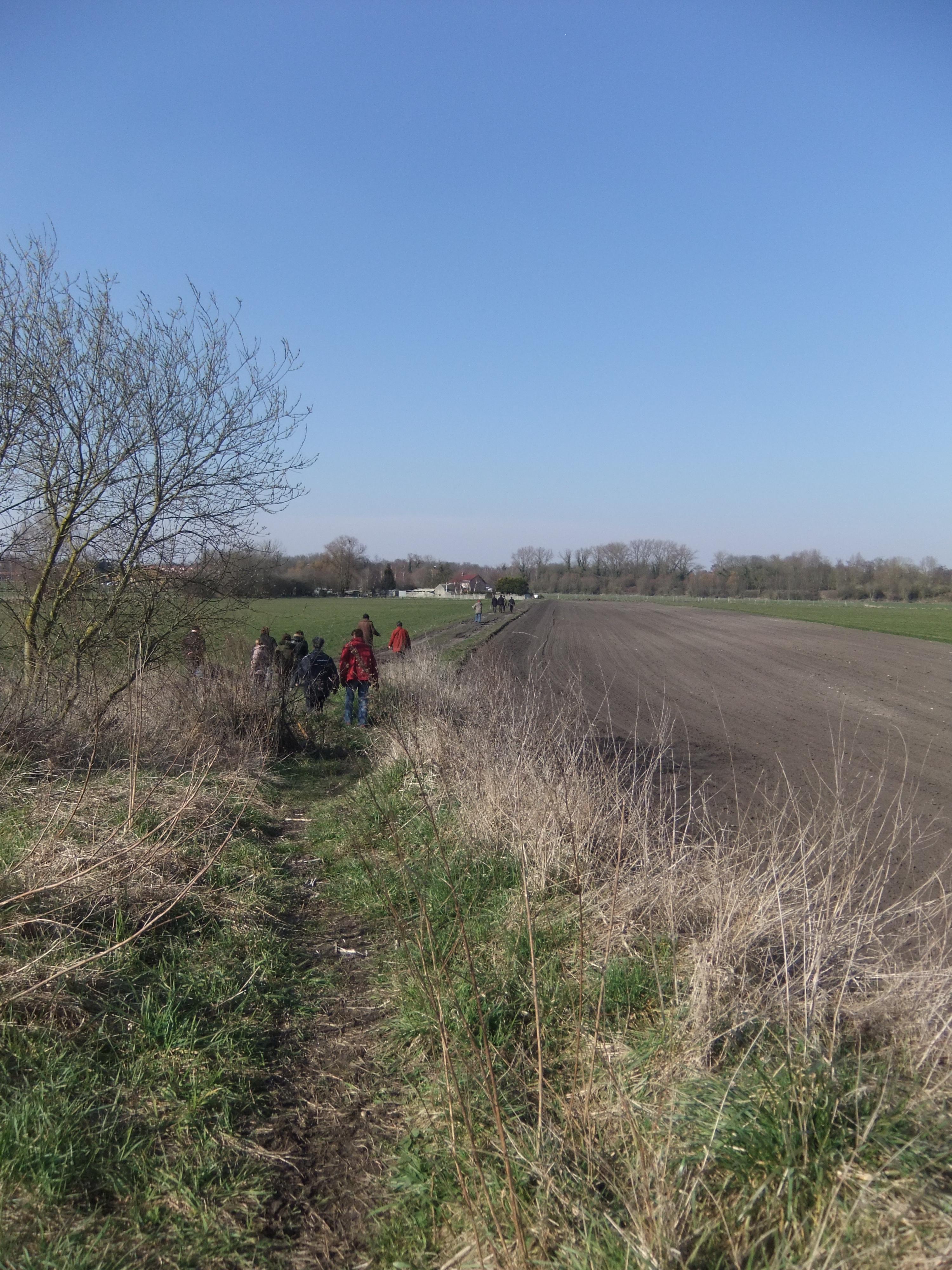 Dans les champs, les groupes s'égrènent au fil des conversations....