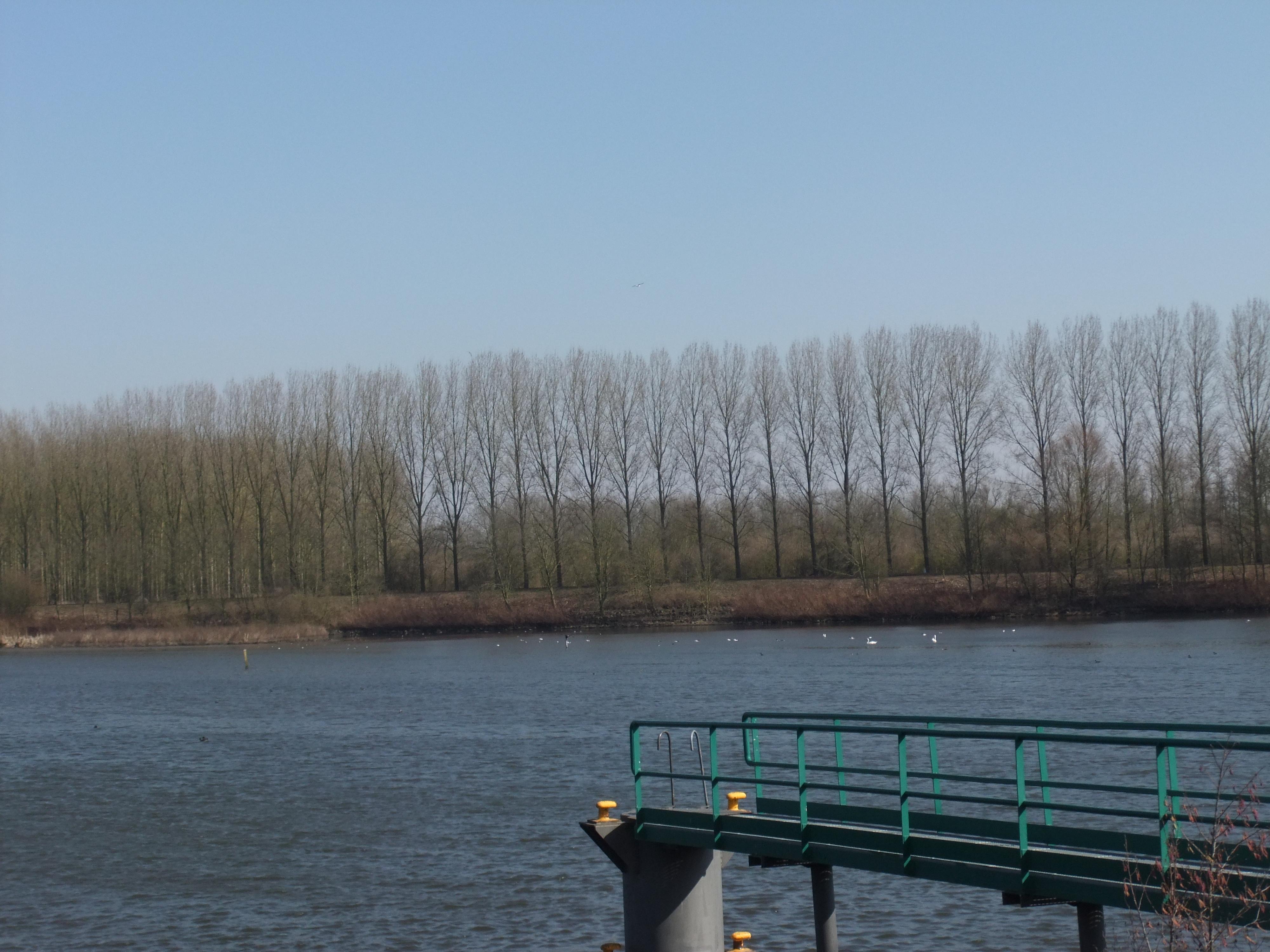 ... Un ciel...encore plus bleu!...dans l'eau de l'Escaut...