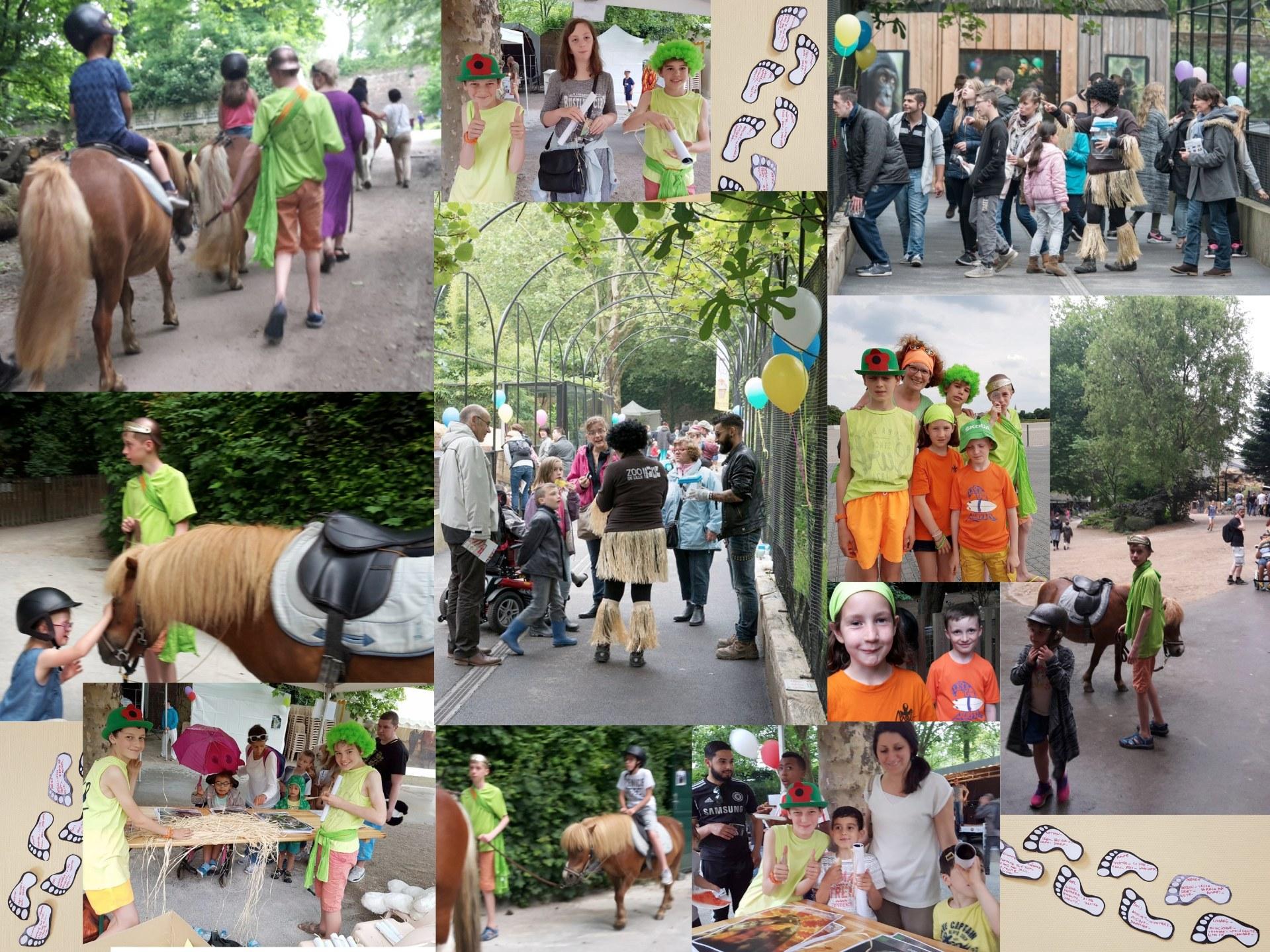 Mejistes Orchies au zoo de Lille