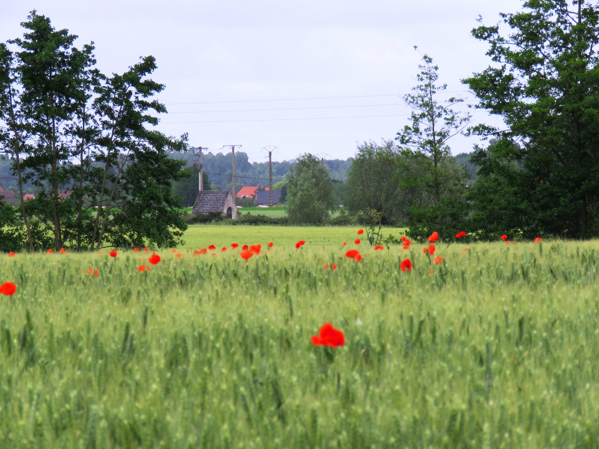 PRTL Cambrai