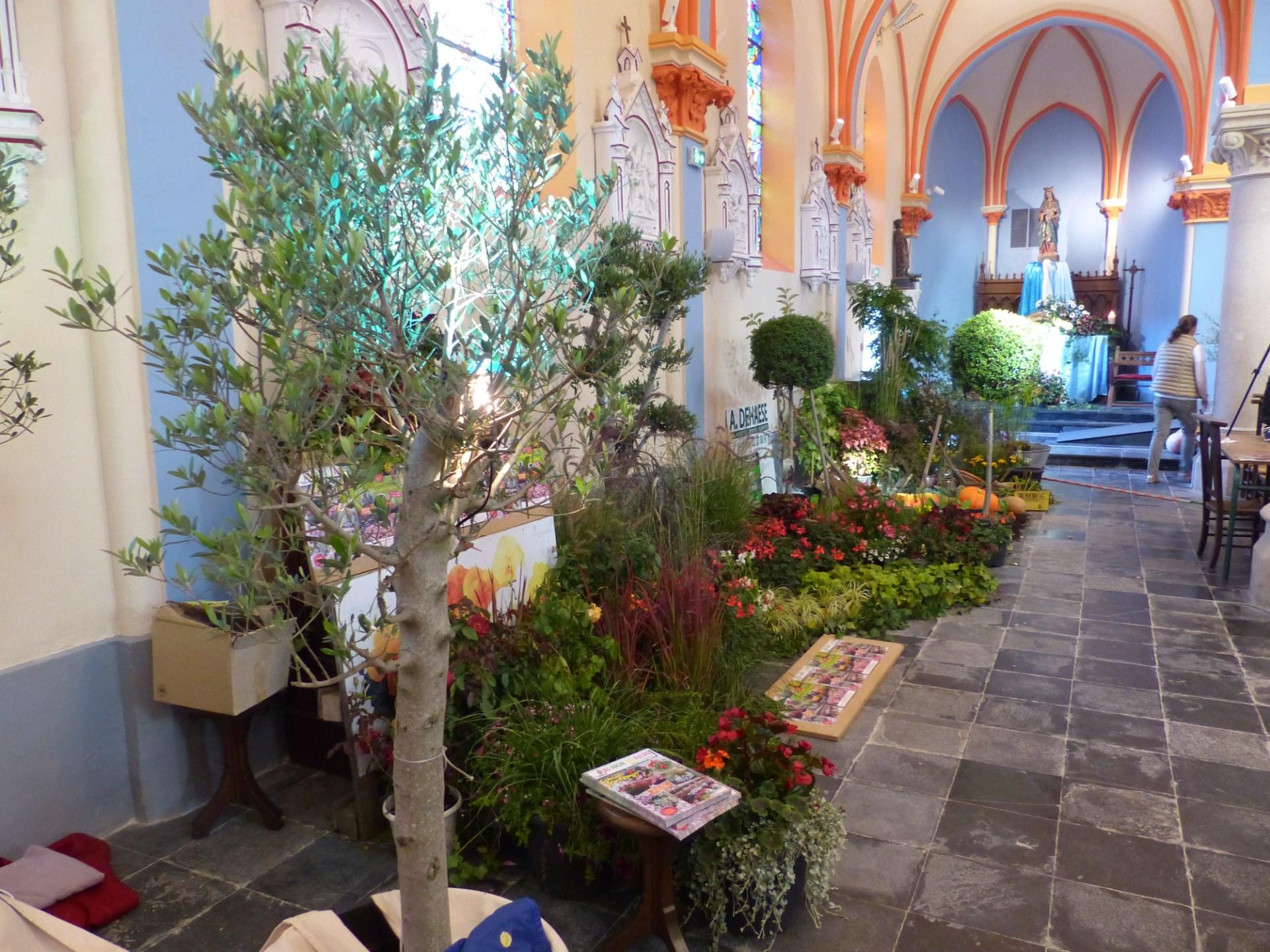 St Fiacre 19