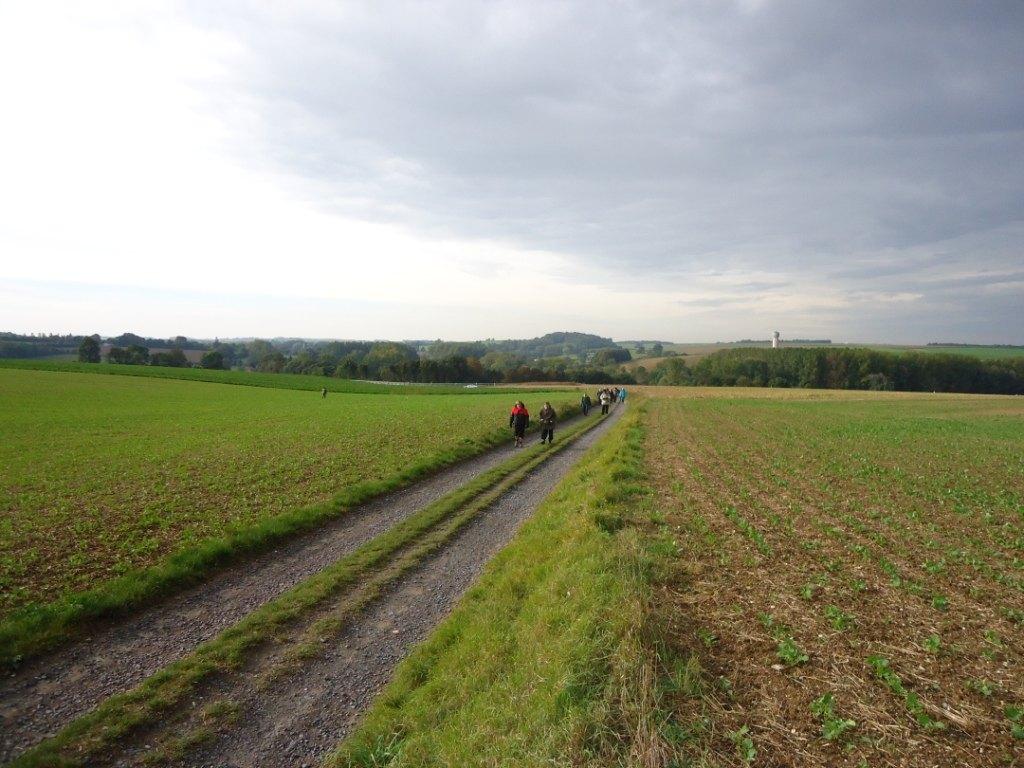 vallee de l'Escaut (2).JPG