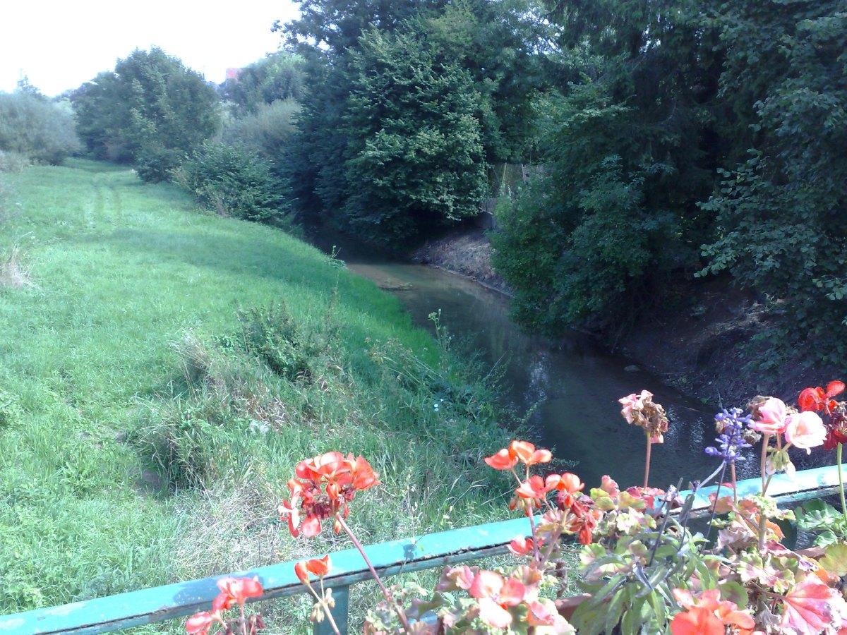 vallee de l'Escaut (3).jpg