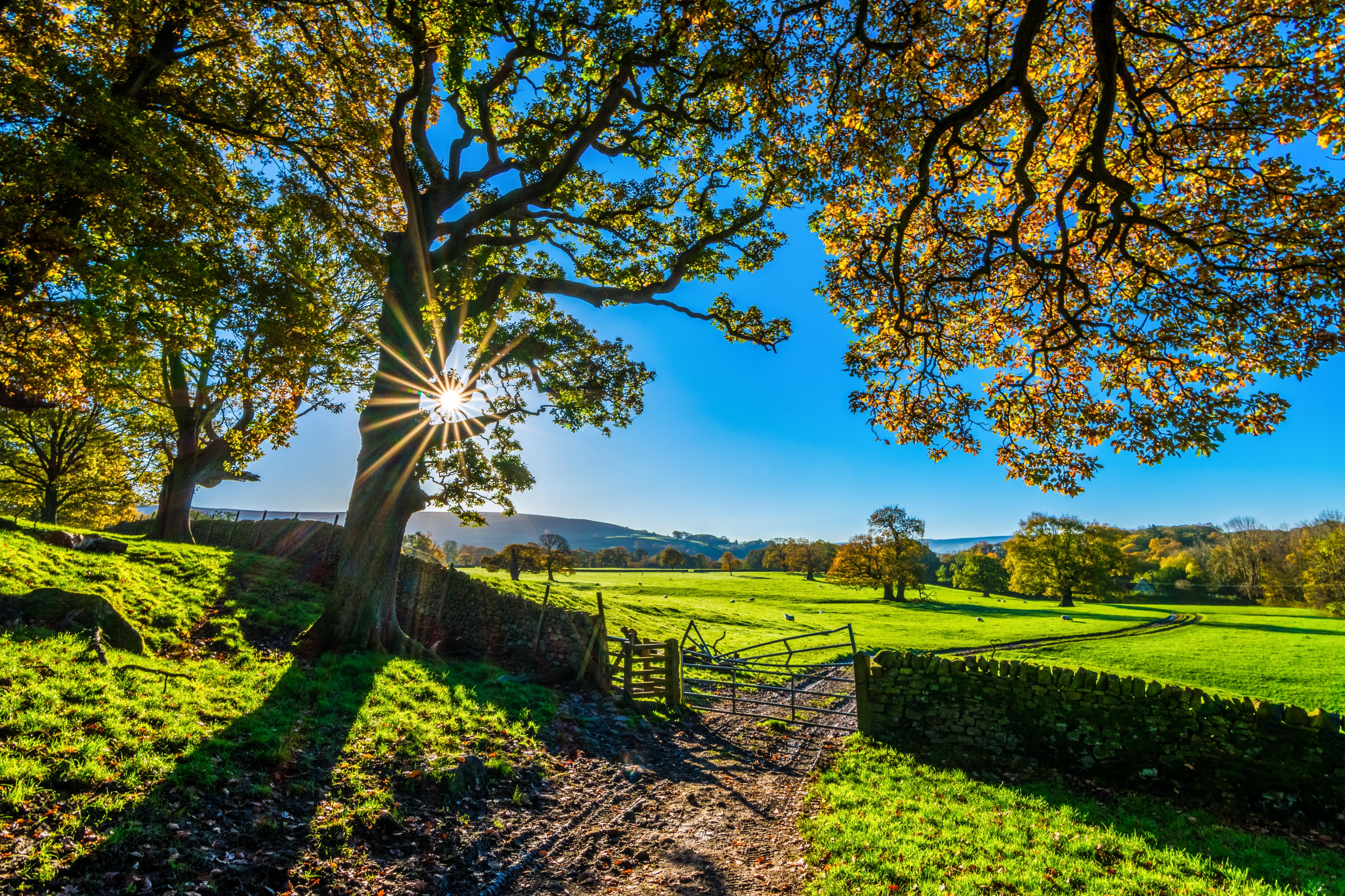 yorkshire, autumn, sunshine